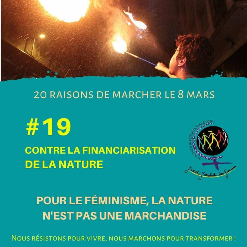 Raison 20 - Financiarisation de la nature.jpg